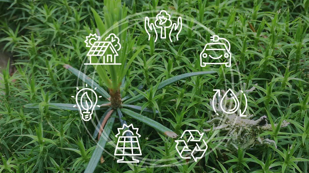 Grafik nachhaltiges Bauen in der Kreislaufwirtschaft